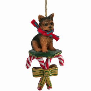 Raining Cats And Dogs Candy Cane Yorkshire Terrier Dog Christmas