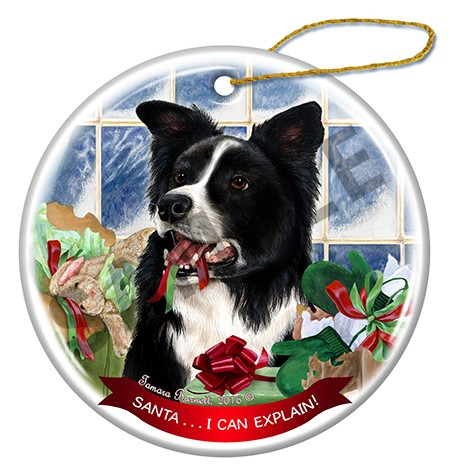 Raining Cats and Dogs |Santa I Can Explain Border Collie Dog Christmas Ornament