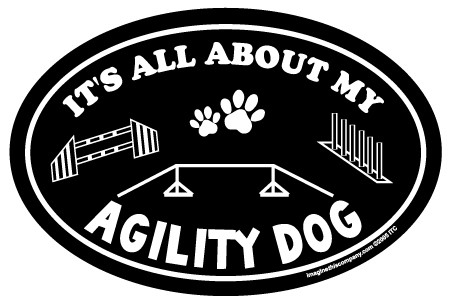 Raining Cats and Dogs | It's All About My Agility Dog Oval Car Magnet