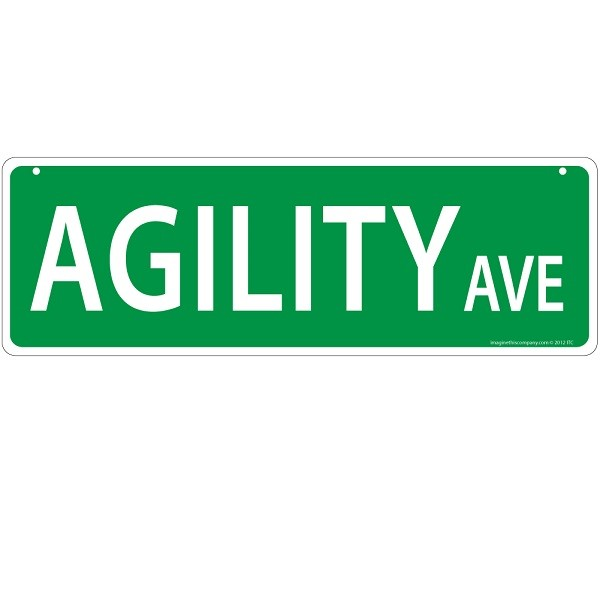 Raining Cats and Dogs | Agility Avenue Street Sign