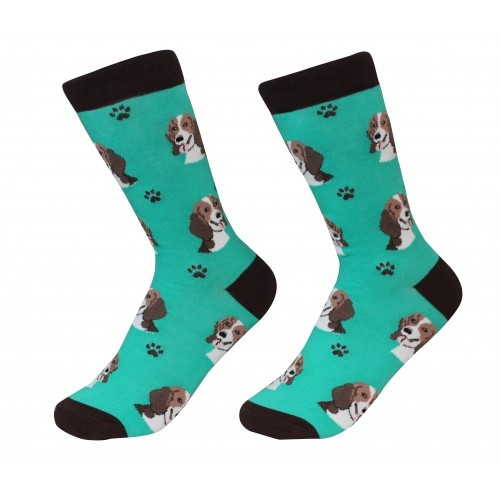 Raining Cats and Dogs | Beagle Pet Lover Socks