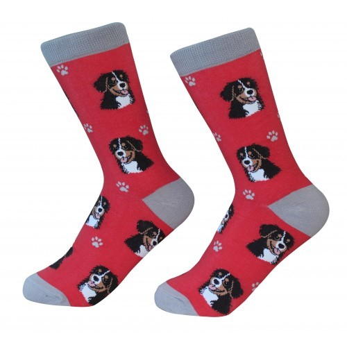 Raining Cats and Dogs | Bernese Mountain Dog Pet Lover Socks