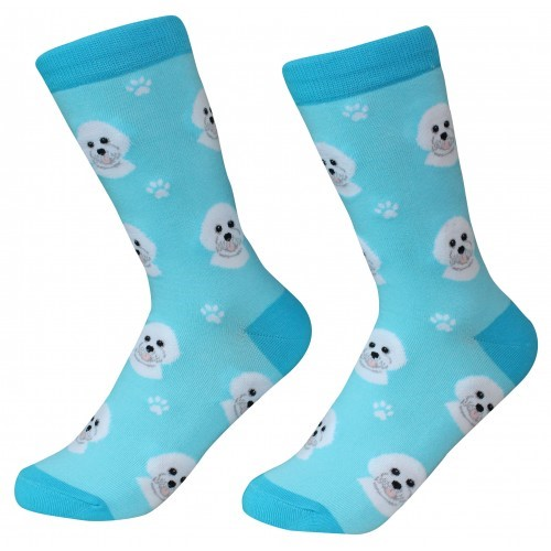 Raining Cats and Dogs | Bichon Frise Pet Lover Socks