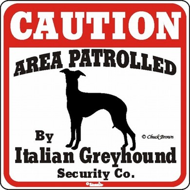 Italian Greyhound Caution Sign, the Perfect Dog Warning Sign