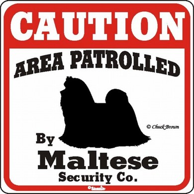 Maltese Caution Sign, a Fun Dog Warning Sign