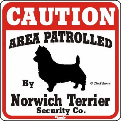Norwich Terrier Caution Sign, the Perfect Dog Warning Sign