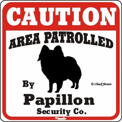 Papillon Caution Sign, a Fun Dog Warning Sign