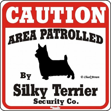 Silky Terrier Caution Sign, a Fun Dog Warning Sign