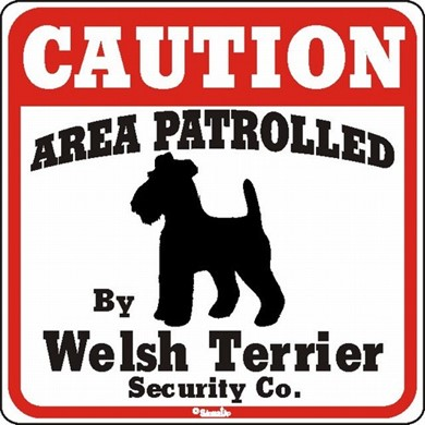 Welsh Terrier Caution Sign, the Perfect Dog Warning Sign