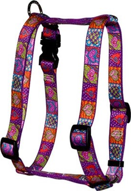 Crazy Hearts Harness