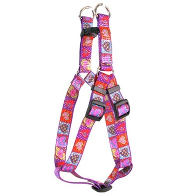 Crazy Hearts Step-In Harness