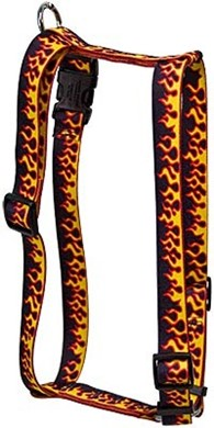 Red Flames Harness