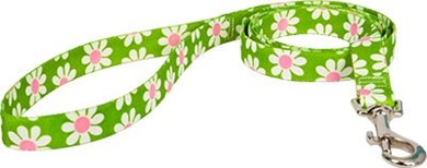 Green Daisy Leash