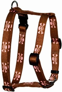 Brown Skulls Harness