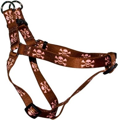 Brown Skulls Step-In Harness