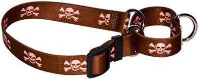 Brown Skulls Martingale Collar