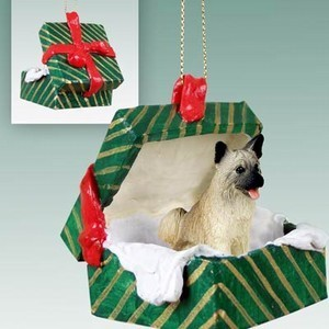Akita Green Gift Box Christmas Ornament