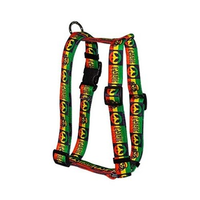 Rasta Harness