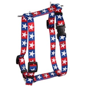 Colonial Stars Harness